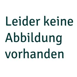 "Hirschhornknopf ""Silberdistel"" (Imitat)"